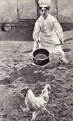 Карандаш – поваренок