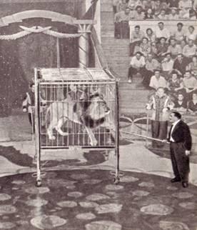 В пустую клетку вошла женщина, и вместо нее в Клетке – живой лев?! Кажется, сам Кио озадачен Таким превращением