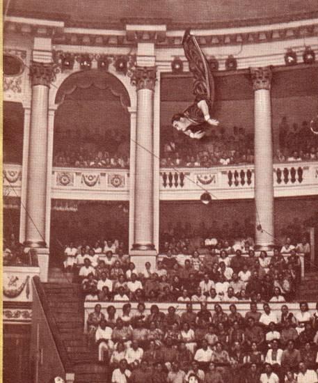 Дворец циркового искусства
