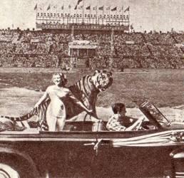 Дрессировщица М. Назарова с тигром Пуршем
