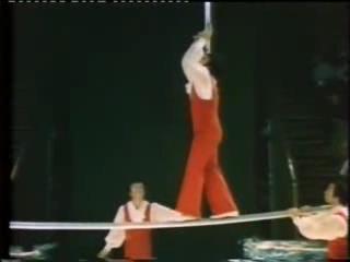Like рашн в программе like рашн участвуют дрессировщики, воздушные гимнасты, жонглёры, эквилибристы